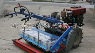 供應手提式自動玉米播種機,花生播種機,大豆播種機