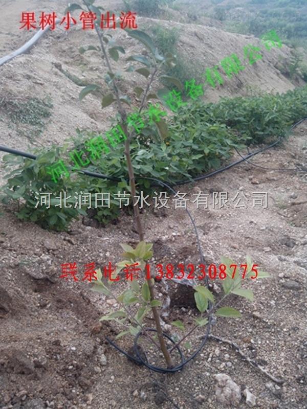 江西吉安市果树滴灌16Pe支管价格