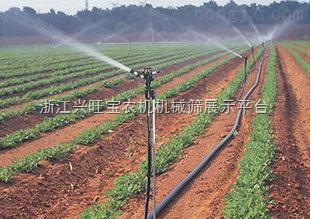 供应石家庄厂家 大田蔬菜、温室大棚滴灌带 单翼迷宫滴灌带
