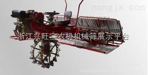 供应山东隆辉插秧机报价|新型插秧机|潍坊插秧机生产商