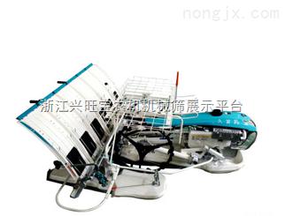 供應山東隆輝機械|插秧機,擺秧機|插秧機生產廠家