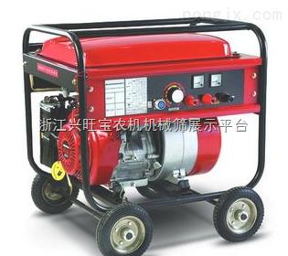 供应DT LPG和CNG汽车喷轨线圈 共轨喷油器 燃油喷射装置