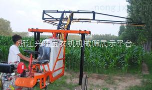 供应立兴喷药机水田喷药机水稻喷药机,水稻喷雾机水稻扬肥器