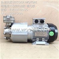 热油泵 YS-MAPW3000 3KW耐高温350度 高温循环泵