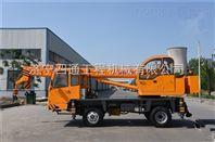 供应各种小吊车 吊车厂家直销7吨小吊车