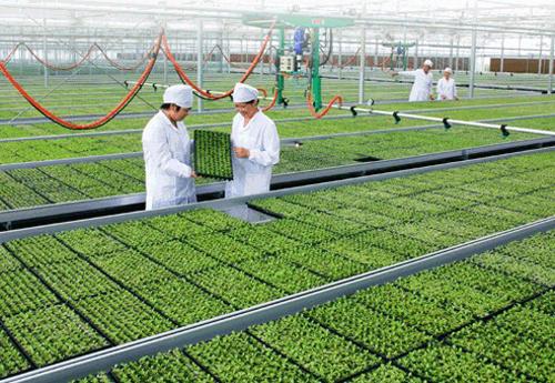 成都市现代农业推进工作成效显著